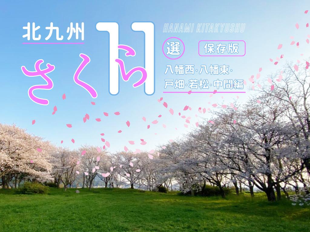 [花見特集2020]北九州の桜の見応え度と名所11選